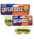 iFetch ballen (2 stuks)