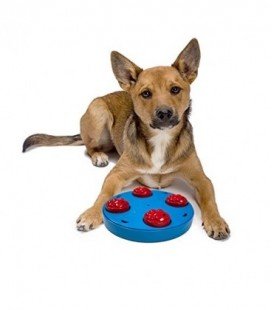 Dog Mini Treat Wheel Puzzle