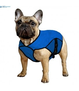 Aqua coolkeeper pet jacket