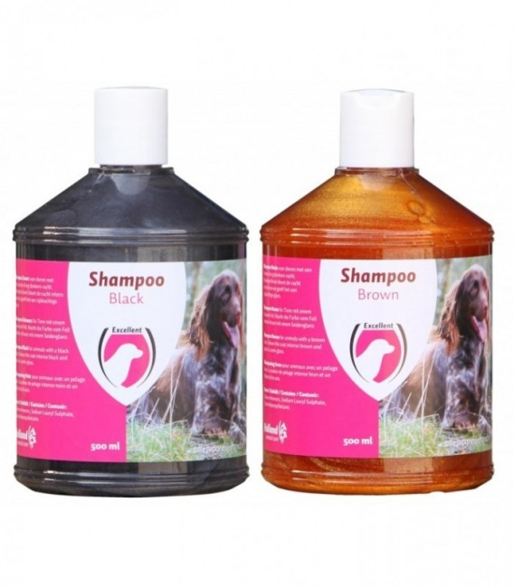 Shampoo Black Dog